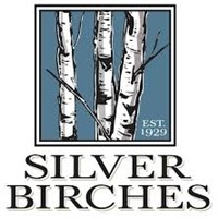 Silver Birches Fall Foliage Train