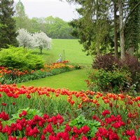 Garden Series Kick Off