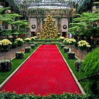 Holiday with the DuPont's Garden Series