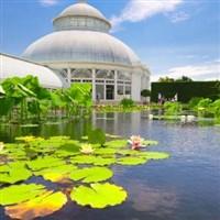 Garden Series - Ny Botanical Garden